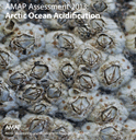 AMAP Assessment 2013: Arctic Ocean Acidification