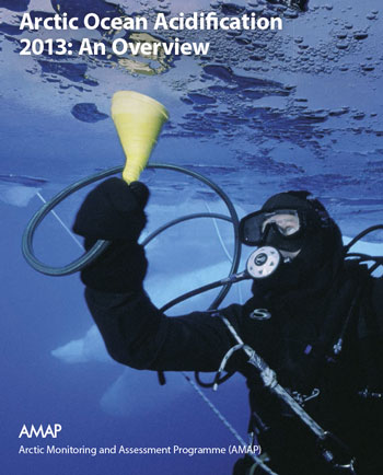 Arctic Ocean Acidification 2013: An Overview