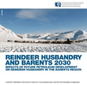 Reindeer husbandry and Barents 2030 - Impacts of future petroleum development on reindeer husbandry