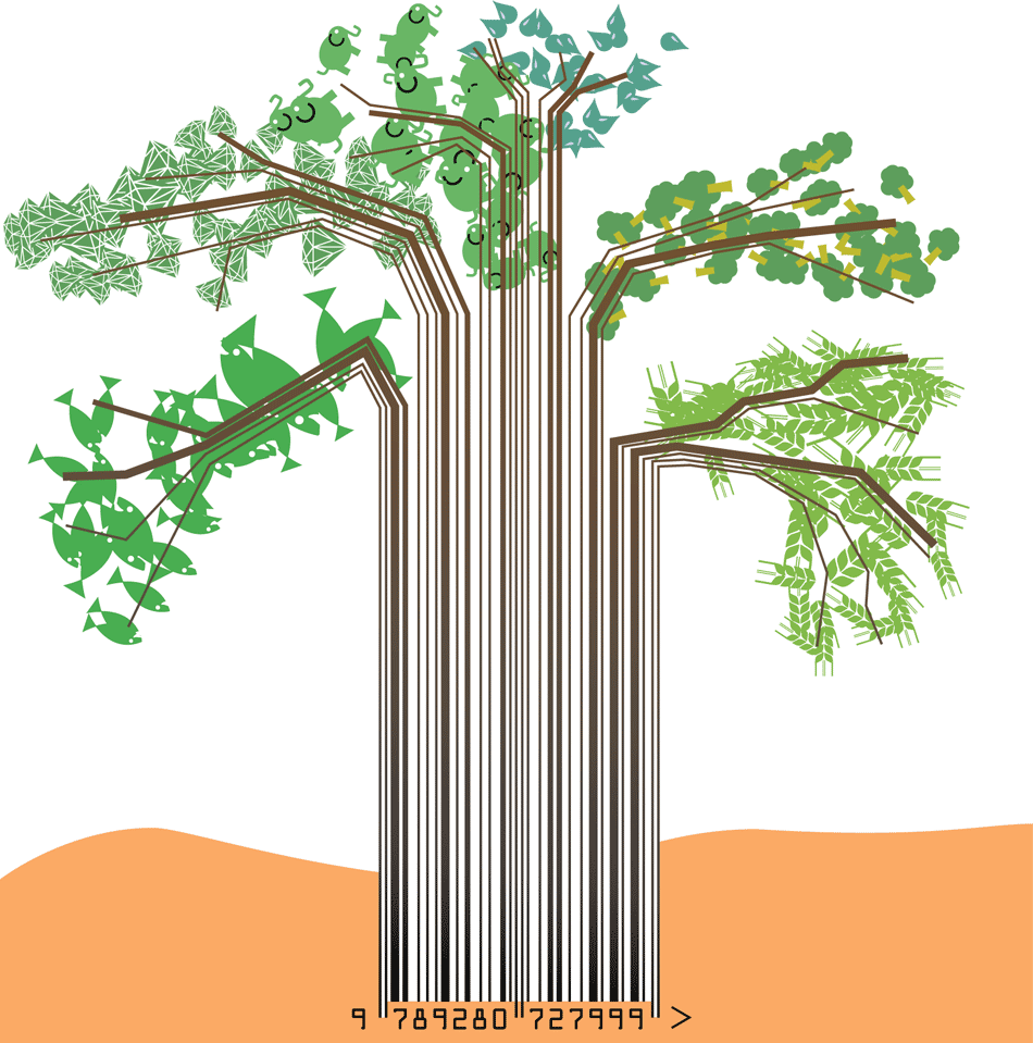 Natural resources for poverty reduction baobab tree from barcode