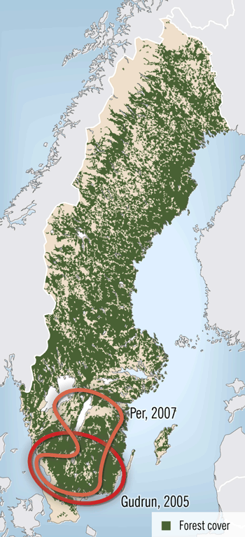 Climate change and Swedish forests
