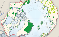 Thumbnail for graphic: Protected areas of the Arctic