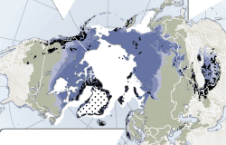 Thumbnail for graphic: Cryosphere, world map of ice, snow, glaciers, permafrost and ice sheets