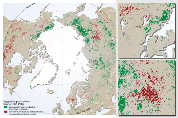 Greening in the Arctic