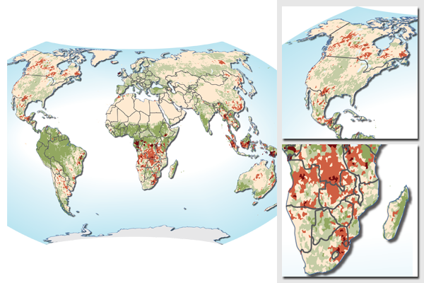 World map of changes in productivity 1981-2003 - land degradation and greening